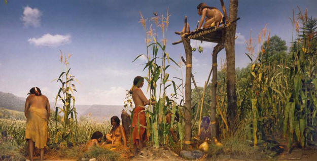 native americans webquests